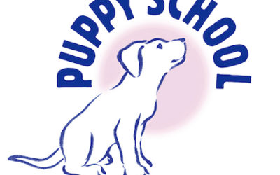 Puppy School Sponsors HTM Team GB